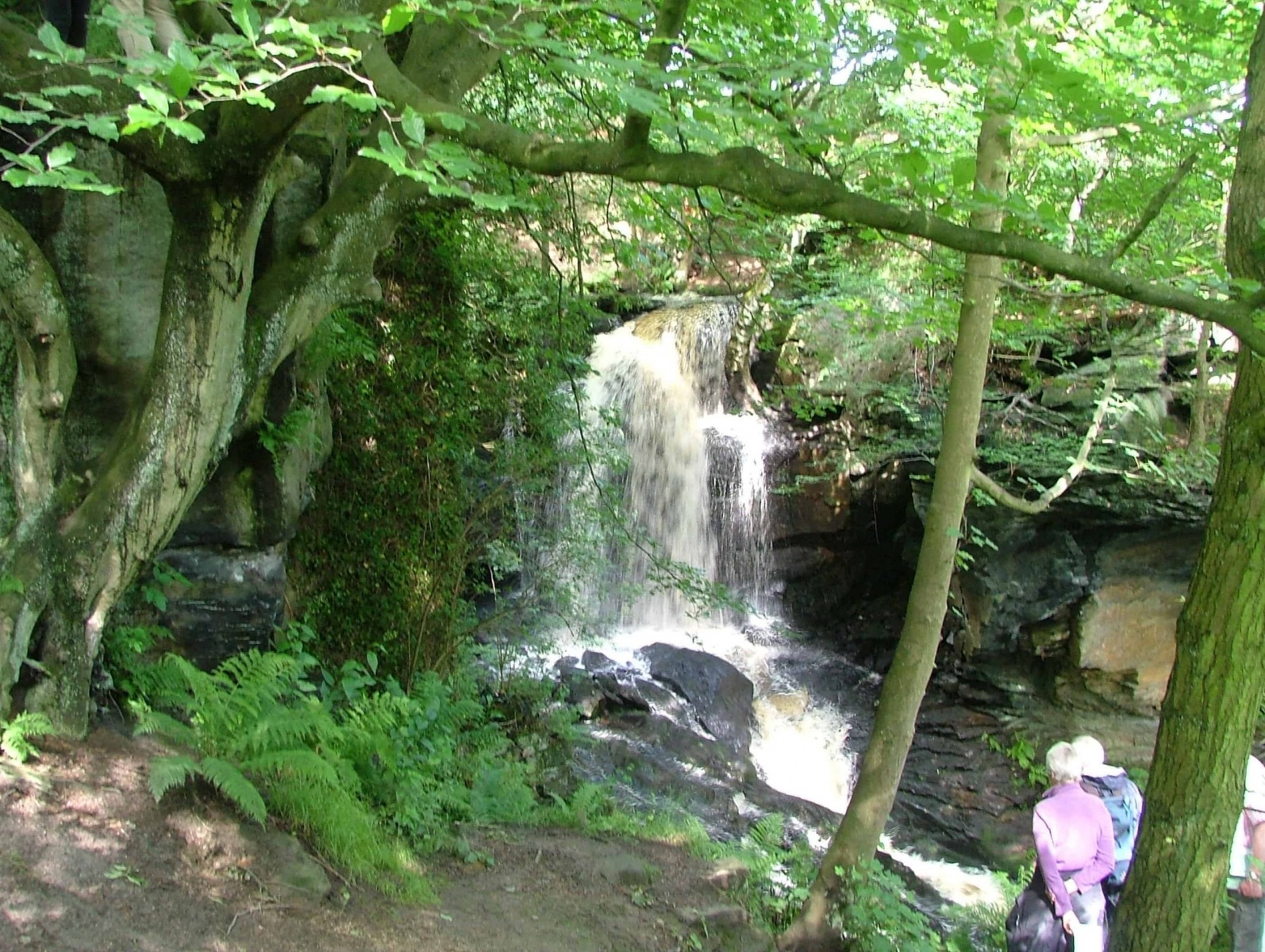 Lumsdale0009A-scaled